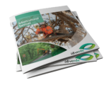 Download Arboriculture Brochure-min